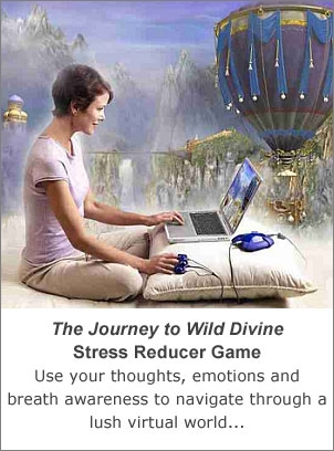 Stress Reducer Game - The Journey to Wild Divine